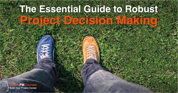 Robust Project Decision Making