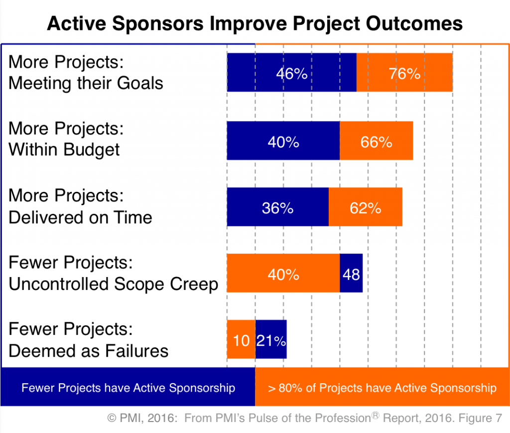 PMI Project Management - Active Sponsors