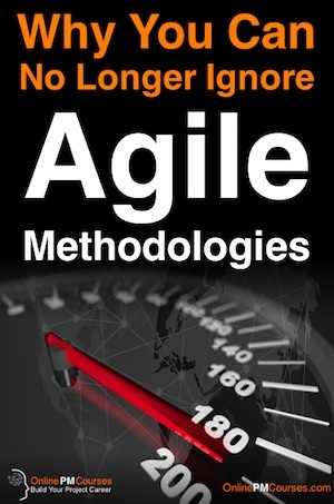 Why You Can No Longer Afford to Ignore Agile Methodologies