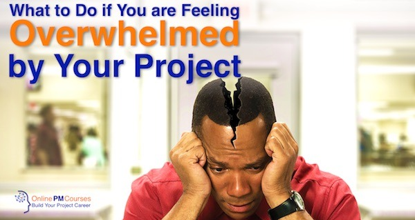 What to Do if You are Feeling Overwhelmed by Your Project