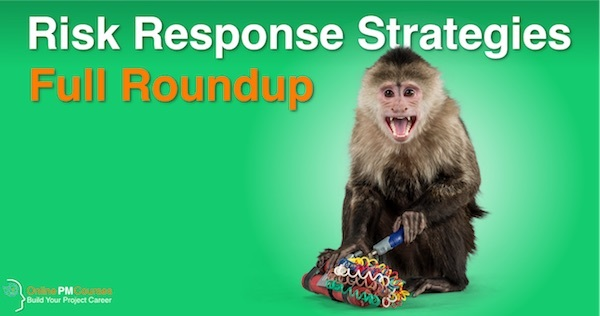 Risk Response Strategies