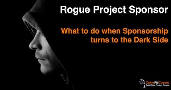 Rogue Project Sponsor